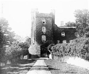 Drimnagh_Castle_(19976184270)